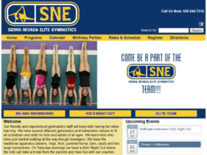 SNE Gymnastics WordPress Website